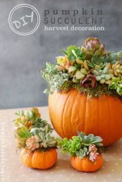 http://www.countryliving.com/diy-crafts/g2009/fall-centerpieces/?slide=7